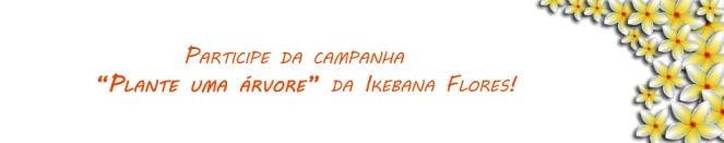 Campanha Plante uma Árvore - Ikebana Flores