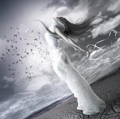 Liberdade da Alma